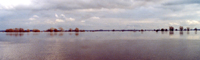 frühlingshochwasser der elbe. ertrunkenes land vor tangermünde, am 27. märz 2005